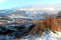 View South down the Blane Valley in December